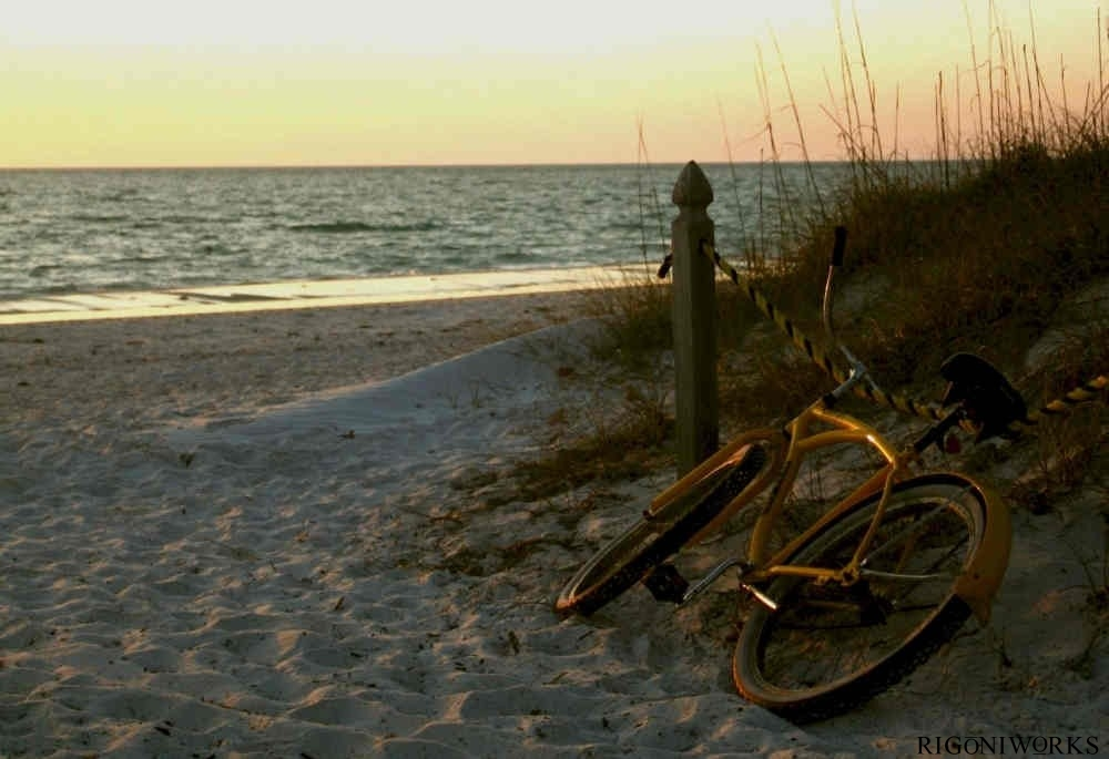Bicycle at The Beach by James C. Rigoni